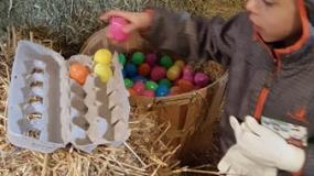 Egg-Citing Egg Hunt (163)