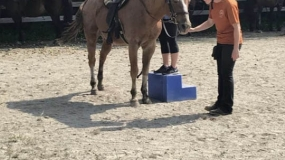 Horse Trail Ride (10)