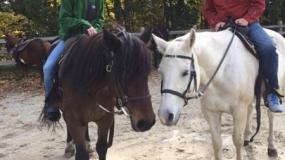 Horse Trail Ride (15)
