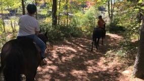 Horse Trail Ride (2)