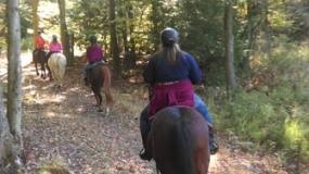 Horse Trail Ride (28)