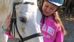 Horse Trail Ride (29)