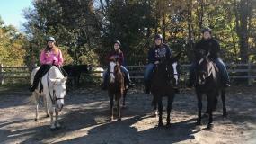 Horse Trail Ride (5)