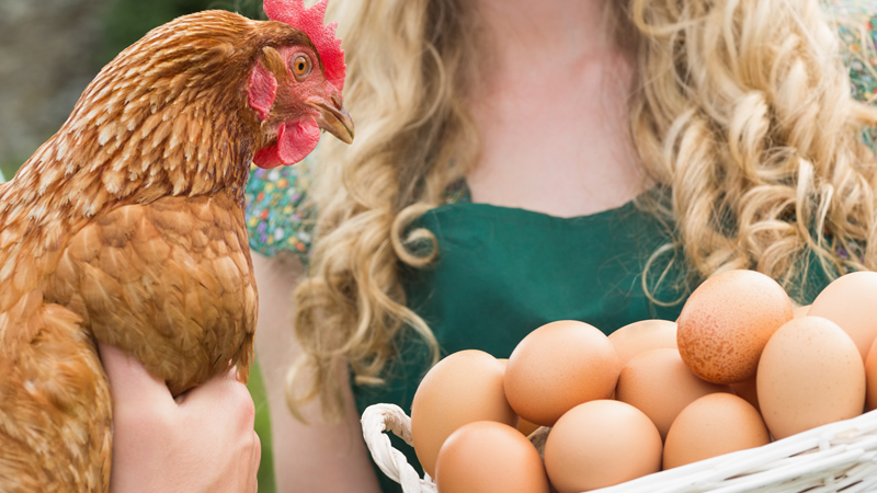 Pasture Egg Share