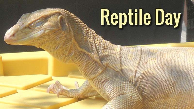 Reptile Day
