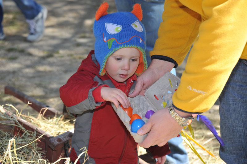 Egg-Citing Egg Hunt - Gallery Image 13