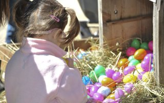 Egg-Citing Egg Hunt - Gallery Image 12