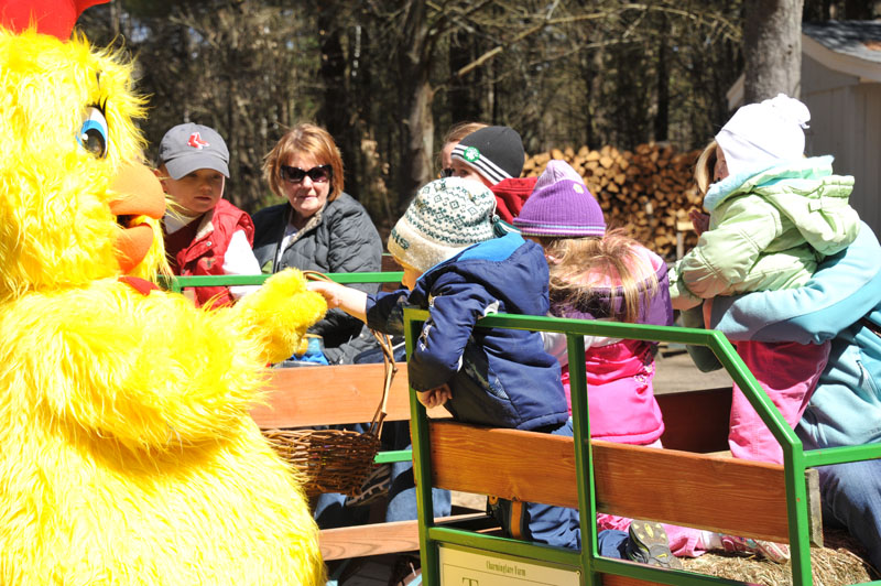 Egg-Citing Egg Hunt - Gallery Image 9