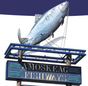 Amoskeag Fishways