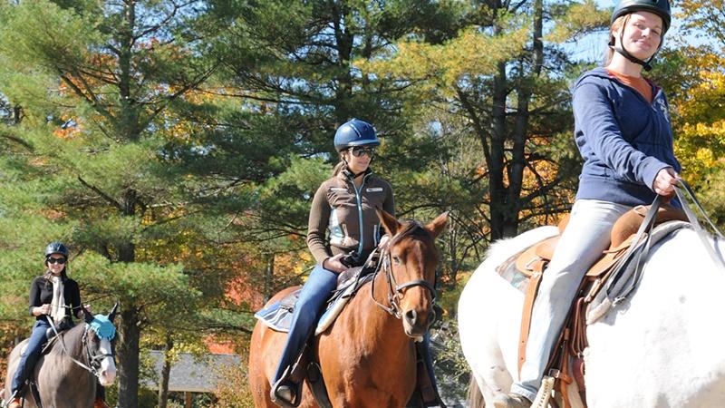 Horse Trail-Rides