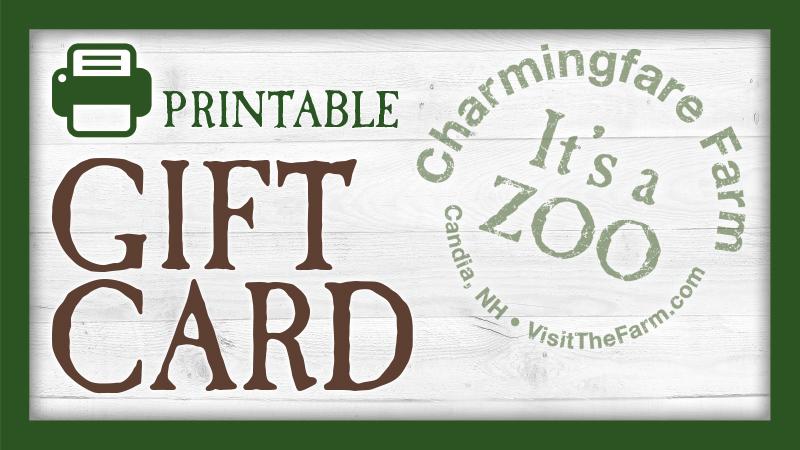 Print & Fold Gift Card