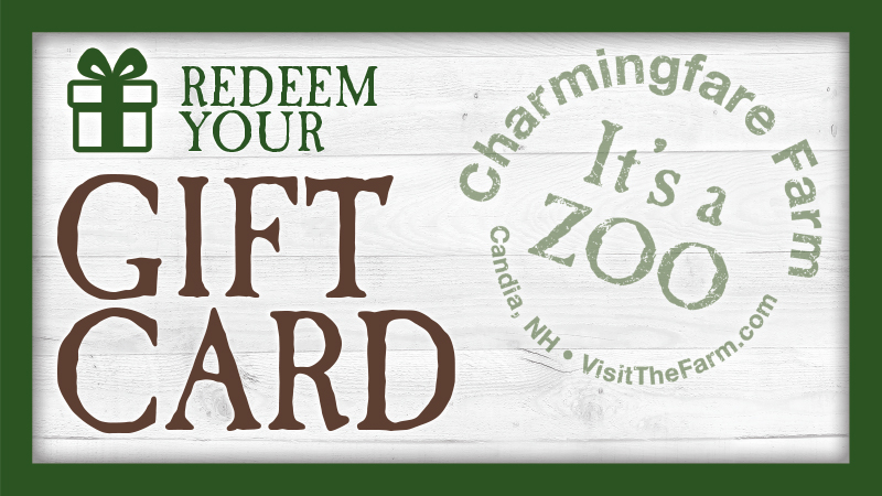 Redeem Gift Card