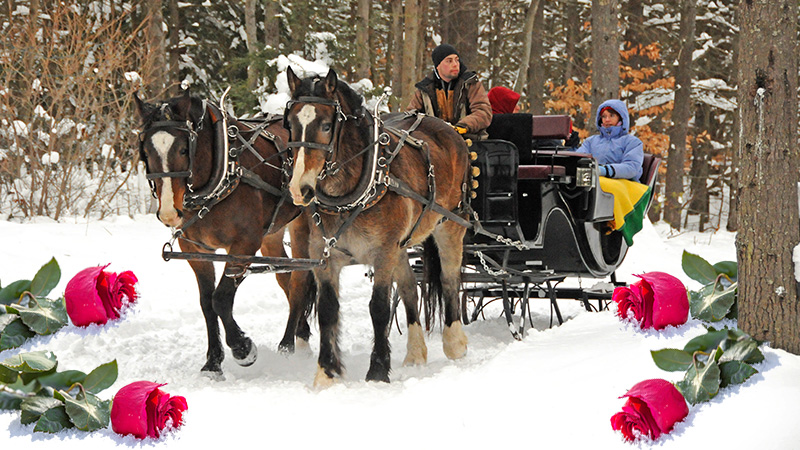[CLOSED] Win a Valentine Sleigh Ride for Two