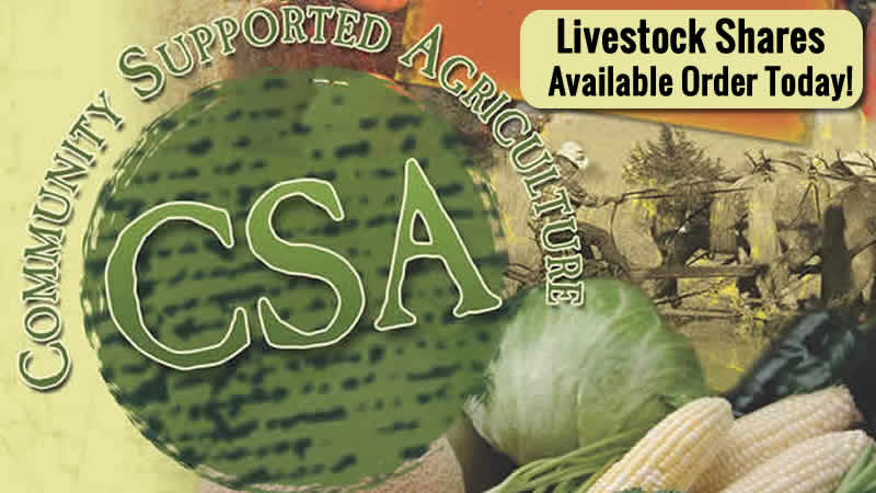 CSA - Veggies & Meat