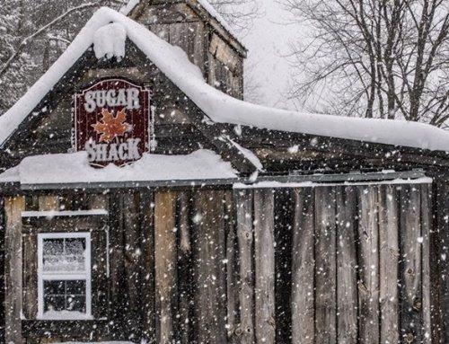 Sugar Shack Tours at Charmingfare Farm's Maple Express