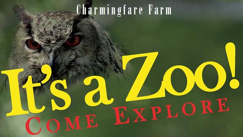Zoo Info