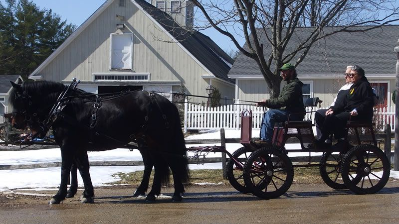 Carriage Trail Rides