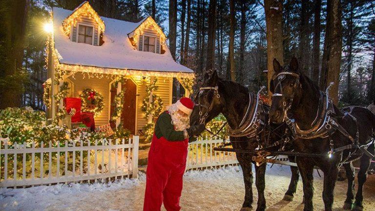 Lighted Winter Wonderland