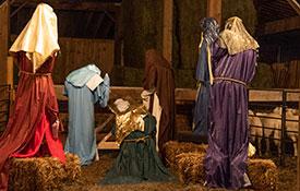 Nativity with Live Animals
