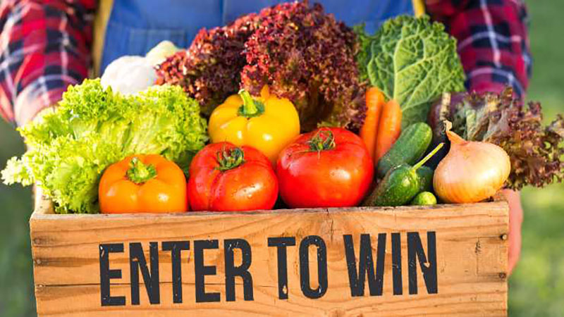 Enter to Win 18 weeks of Veg Share